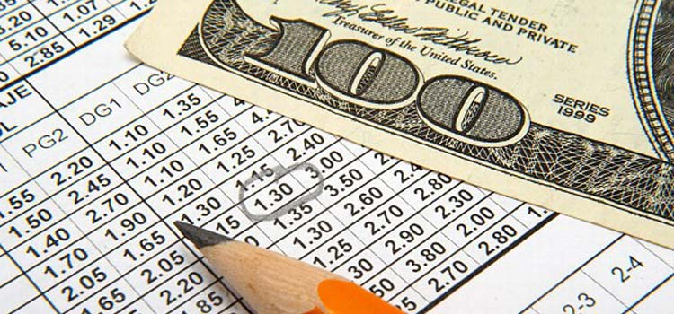 Differences Between A Professional Bettor and an Amateur Bettor
